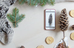 Top view of a mobile phone and a pine cone. Winter mood. Flat lay Royalty Free Stock Image