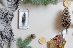 Top view of a mobile phone and a pine cone. Winter mood. Flat lay Royalty Free Stock Photo