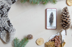 Top view of a mobile phone and a pine cone. Winter mood. Flat lay Royalty Free Stock Photos