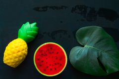 monstera green leaf ,pineapple and watermelon squishy toy on blackboard copy space stock photo