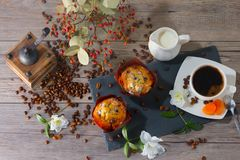 Top view of morning set with two muffins, cup of aroma coffee, jug of cream to coffee and dogrose on gray wooden. Top view of morning set with two muffins, cup Royalty Free Stock Images