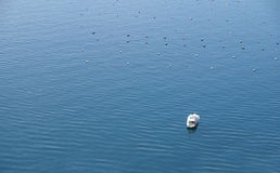 Top view of motorboat at the sea. White motorboat anchored at the calm sea royalty free stock photo
