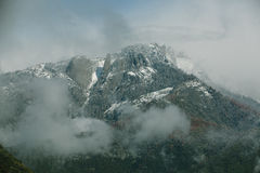 Top View of Mountain Full of Trees Under Clouds Stock Photography
