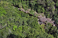 Top view of a mountain river in the bush in Kondalilla National Park Stock Photos