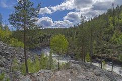 Top view of a mountain river. Stock Photos