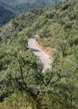 Top view of mountain road with curves Stock Image