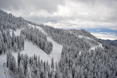 Top view of the mountains with forest in winter. Poiana Brasov royalty free stock photos