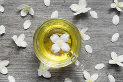 Top view of mug of herbal tea and jasmine flowers Stock Photos