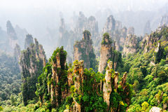 Top view of natural quartz sandstone pillars Avatar Mountains. Top view of amazing natural quartz sandstone pillars of fantastic shapes among green woods in the royalty free stock photo