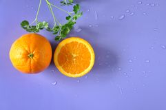 Top view of Navel Orange with Green Plant on Background Stock Photo