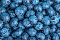 Top view of nutritious and sweet dark blueberries for healthy diets as a background. Organic berries for nutritious summer dessert Stock Photo