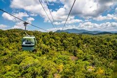 Top View Of Australian Rainforest In Kuranda Royalty Free Stock Photo