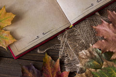 Top view of the old book. Top view of old book among yellow leaves Royalty Free Stock Image