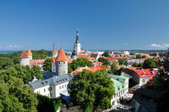 Top view on old city in Tallinn Estonia. In daylight Royalty Free Stock Images