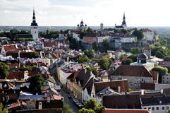 Top view on old city in Tallinn Estonia Royalty Free Stock Photos