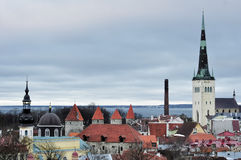 Top view on old city in Tallinn Estonia. With Olaf Church Royalty Free Stock Photo