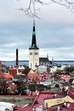 Top view on old city in Tallinn Estonia. With Olaf Church Royalty Free Stock Image