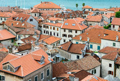 Top view of the Old Town, Kotor, Montenegro Royalty Free Stock Images