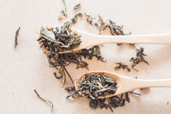 Top view of Oolong tea in wooden spoons Stock Images