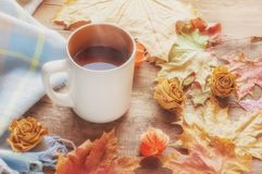Top view orange coffee Cup framed by autumn colored maple leaves on a brown wooden Board background. Art. Soft focus stock photography