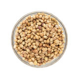 Top view of Organic Dried coriander seeds. Stock Photography