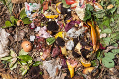 Top view of organic waste. Bio-waste with pieces of eggs, onions and others fruits in decomposition Stock Image