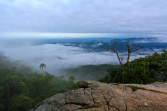 Top view from Pa Hin Ngam national park Stock Images