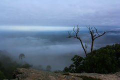Top view from Pa Hin Ngam national park Royalty Free Stock Images