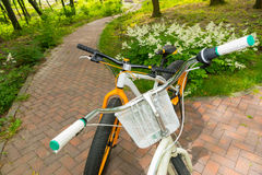 Top view of pair of bikes on bricks Royalty Free Stock Photography
