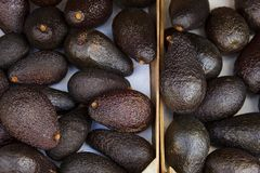 Ripe fruit palette top view brown green lots of avocado market peel texture royalty free stock photo