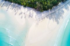 Top view paradise white sand turquoise beach with coconut palm t royalty free stock photos