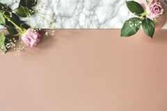 Top view on pastel background with copy space and pink roses. Place for your text stock image