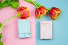 Pastel pink and blue gift boxes and red tulips on a pink and blue background, springtime festive flat lay. Top view pastel pink and blue gift boxes and red stock photo