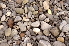 Top view of the pebbles of different size and shape of gray and brown. stock photos