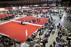 Top view of people and dogs at the international dogs exhibition of Milan, Italy Royalty Free Stock Photography