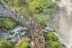 Top View of People at Iguazu Park Stock Image