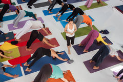 Top view of people at Yoga Festival in Milan, Italy. MILAN, ITALY - OCTOBER 11: People take a class at Yoga Festival 2013, event dedicated to yoga, meditation Stock Image