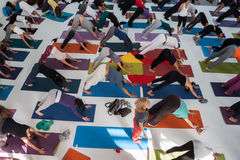 Top view of people at Yoga Festival in Milan, Italy. MILAN, ITALY - OCTOBER 11: People take a class at Yoga Festival 2013, event dedicated to yoga, meditation Royalty Free Stock Image