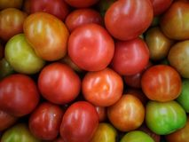 Pile of raw tomatoes overlapped in the bucket of market royalty free stock photo