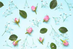 Top view of pink roses and green leaves over blue background. Abstract floral background. Stock Photo