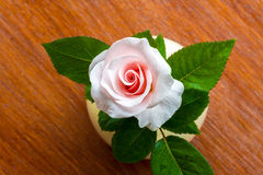 Top view Pink roses Stock Photography