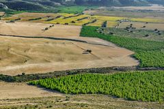 Top view of plain with crops and vineyards. Plain with crops and vineyards, top view at dusk Stock Photo