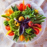 Top view plate with assorted fresh vegetables royalty free stock photos