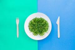 Top view plate with fresh organic sprout micro greens served with wooden cutlery on the bright double color background. Healthy Ra. W diet food concept. Copy Royalty Free Stock Images