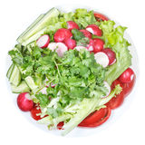 Top view of plate with fresh season vegetables Royalty Free Stock Photos
