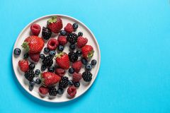 Top view of a plate with variety of forest fruits, berries on a royalty free stock photo