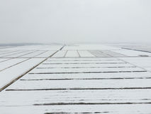 Top view of a plowed field in winter. A field of wheat in the snow.  Stock Photos