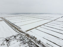 Top view of a plowed field in winter. A field of wheat in the snow.  Royalty Free Stock Photos