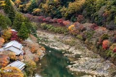 Top view Arashiyama in autumn. Top view point of house near Katsura river and colorful foliage forest in autumn season, beautiful fall colors at Arashiyama Royalty Free Stock Image