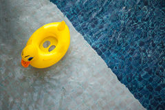 Top view of pool with yellow duck toy floating - relaxation and Stock Image